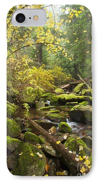 Beauty Creek Phone Case by Idaho Scenic Images Linda Lantzy