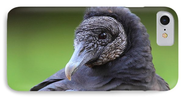 Black Vulture Portrait IPhone Case by Bruce J Robinson