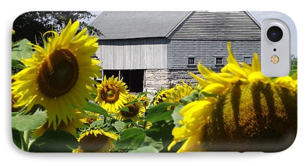 Buttonwood Farm IPhone Case by Michelle Welles