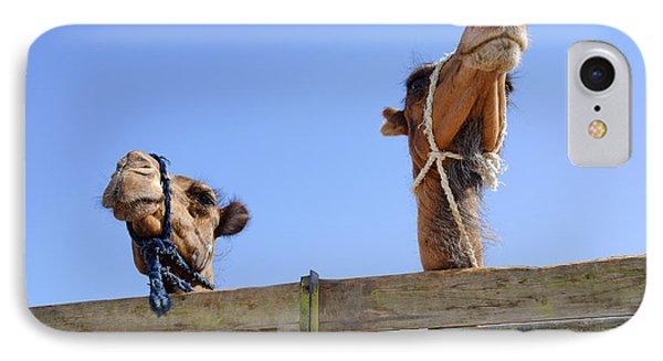 Camels At The Ashgabat Sunday Market In Turkmenistan Phone Case by Robert Preston