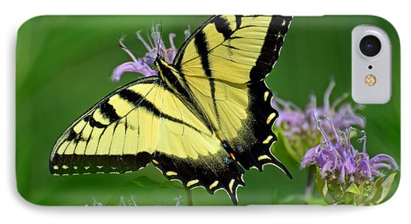 IPhone Case featuring the photograph Eastern Tiger Swallowtail by Rodney Campbell