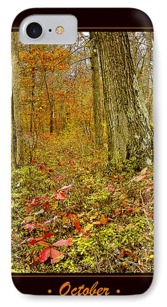 IPhone Case featuring the photograph Forest Interior Autumn Pocono Mountains Pennsylvania by A Gurmankin