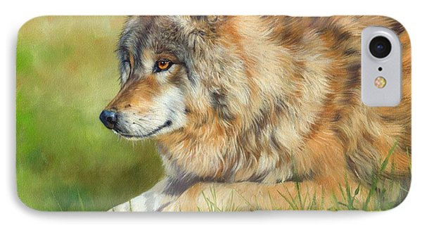 Grey Wolf IPhone Case by David Stribbling