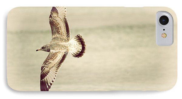 Herring Gull In Flight Phone Case by Karol Livote