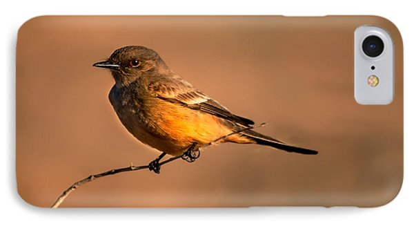Say's Phoebe IPhone Case by Robert Bales