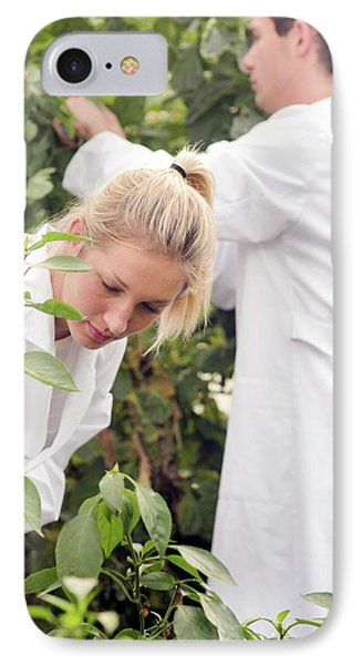 Scientists Examining Tomatoes IPhone Case by Gombert, Sigrid
