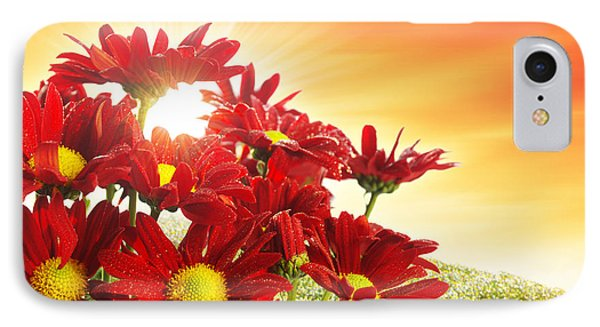 Spring Blossom IPhone Case by Carlos Caetano
