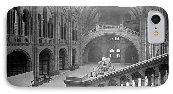 The Natural History Museum IPhone Case by Natural History Museum, London