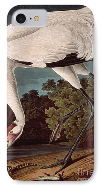 Whooping Crane IPhone 7 Case by John James Audubon