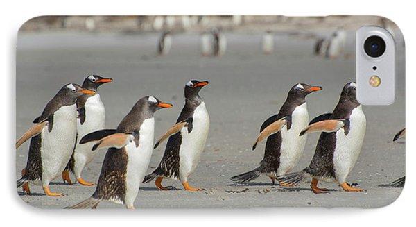 Falkland Islands IPhone Case by Inger Hogstrom