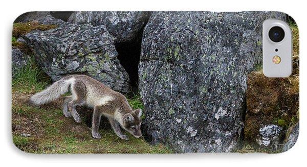 Norway, Svalbard, Prins Karls Forland IPhone Case by Jaynes Gallery
