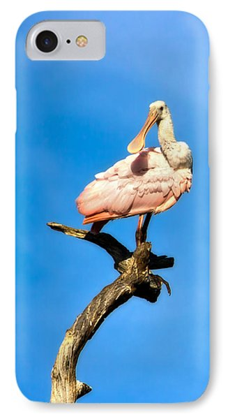 Roseate Spoonbill IPhone Case by Mark Andrew Thomas