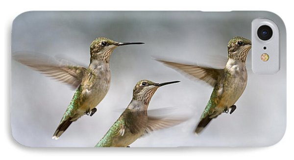 Trio IPhone Case by Betsy Knapp