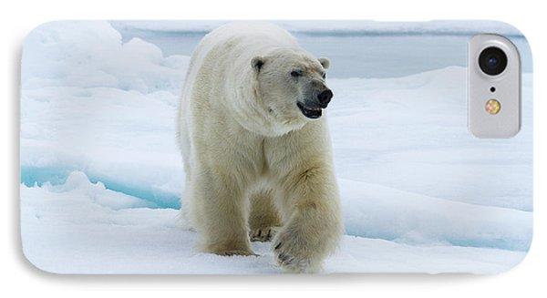 Norway, Svalbard IPhone Case by Jaynes Gallery