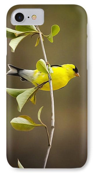 American Goldfinch IPhone 7 Case by Christina Rollo