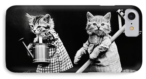 Frees Kittens, C1914 IPhone Case by Granger