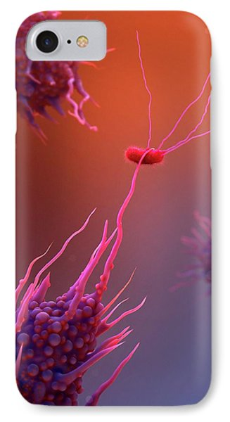 Macrophage Engulfing Bacteria IPhone Case by Tim Vernon