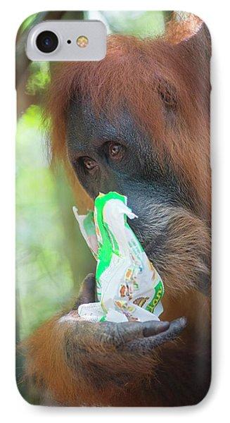 Sumatran Orangutan IPhone Case by Scubazoo