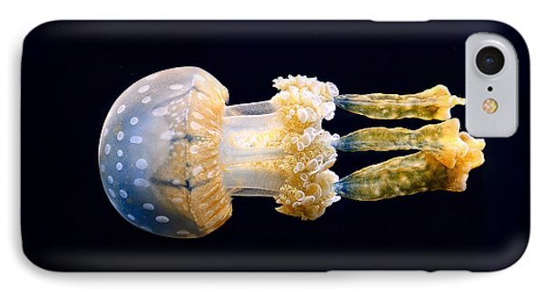 The Spotted Jelly Or Lagoon Jelly Mastigias Papua. Phone Case by Jamie Pham