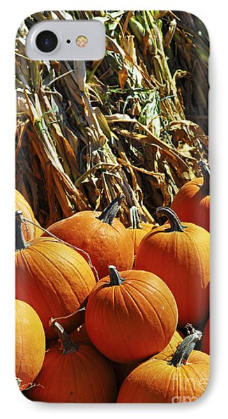 Pumpkins Phone Case by Elena Elisseeva