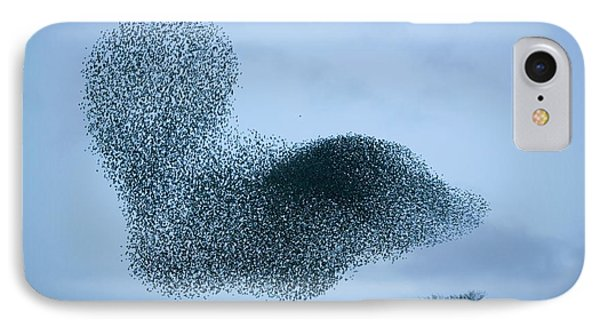 Starlings Flying To Roost IPhone Case by Ashley Cooper
