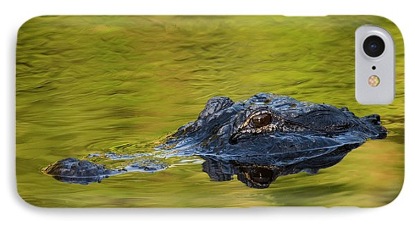 Usa, Florida, St IPhone 7 Case by Jaynes Gallery