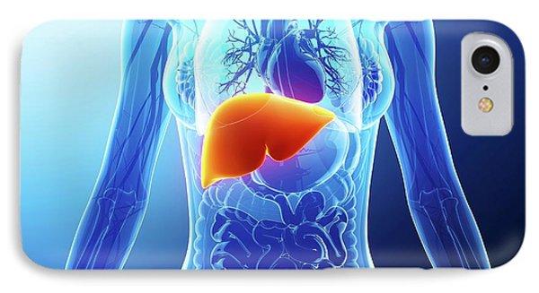 Human Liver IPhone Case by Pixologicstudio
