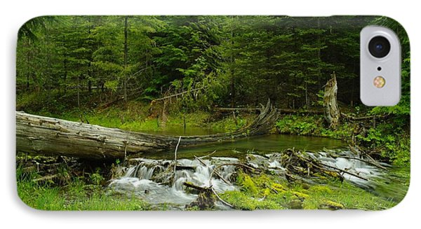 A Beaver Dam Overflowing IPhone Case by Jeff Swan