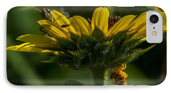 A Bugs World IPhone Case by Ernie Echols