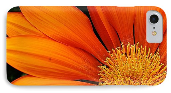 A Burst Of Orange Phone Case by Bruce Bley