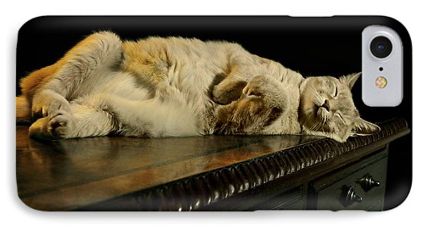 A Cat's Life IPhone Case by Diana Angstadt