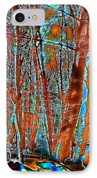 A Change In The Seasons Vi IPhone Case by David Patterson