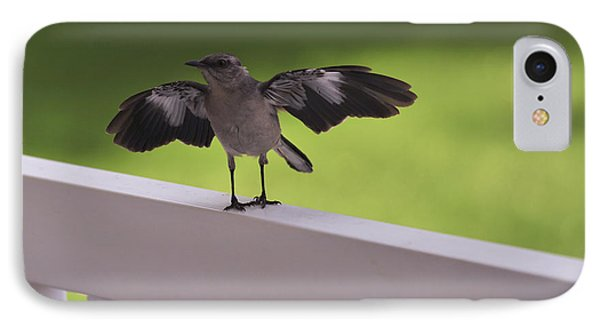 A Little Visitor Northern Mockingbird IPhone Case by Terry DeLuco