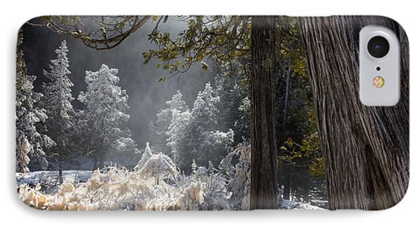 A North Woods Fairy Tale IPhone Case by Mary Amerman