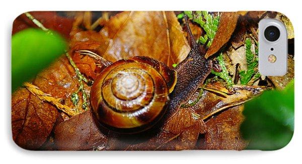 A Slow Snail Phone Case by Jeff Swan