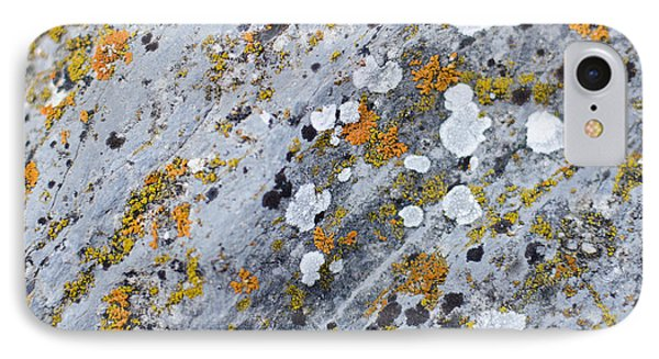Abstract Orange Lichen 2 IPhone 7 Case by Chase Taylor