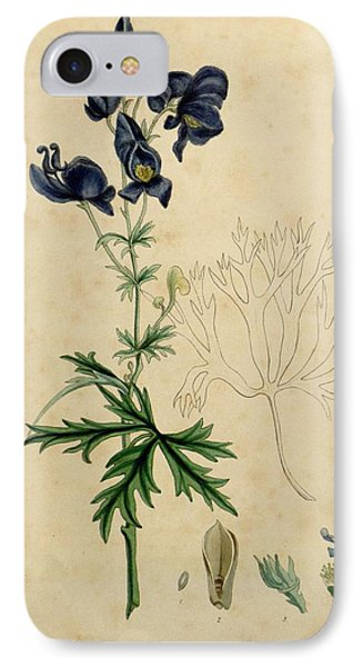 Aconitum Napellus By Sowerby IPhone Case by Philip Ralley