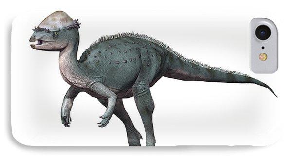 Acrotholus Audeti, Late Cretaceous IPhone Case by Nobumichi Tamura