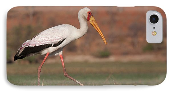 Africa, Botswana, Chobe National Park IPhone 7 Case by Jaynes Gallery