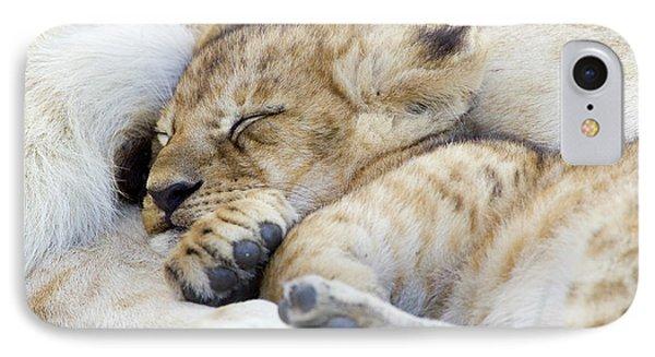 African Lion Cub Sleeping Phone Case by Suzi Eszterhas