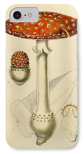 Agaricus Mushroom By Sowerby IPhone Case by Philip Ralley