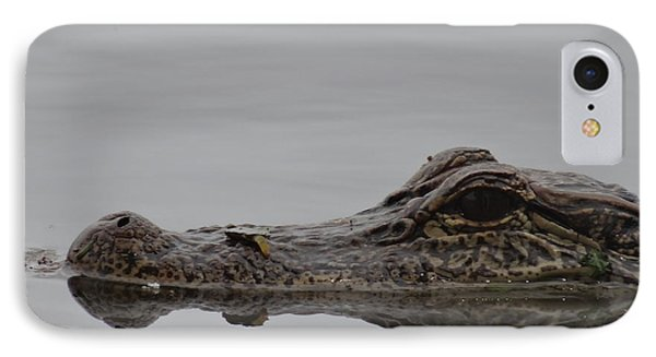 Alligator Eyes IPhone 7 Case by Dan Sproul
