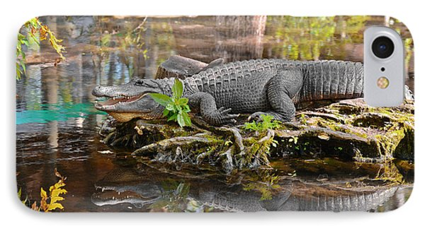 Alligator Mississippiensis Phone Case by Christine Till