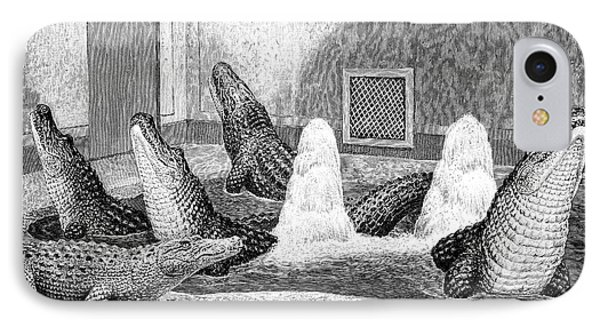 Alligators In Captivity IPhone 7 Case by Science Photo Library