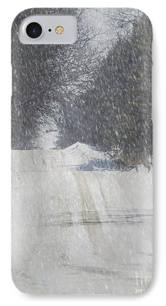 Alpine Buck IPhone Case by Keith Bell
