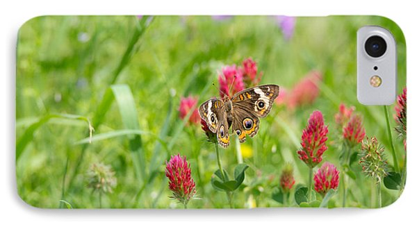 American Lady Butterfly IPhone Case by Mitch Wessels