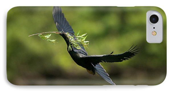 Anhinga IPhone Case by Anthony Mercieca