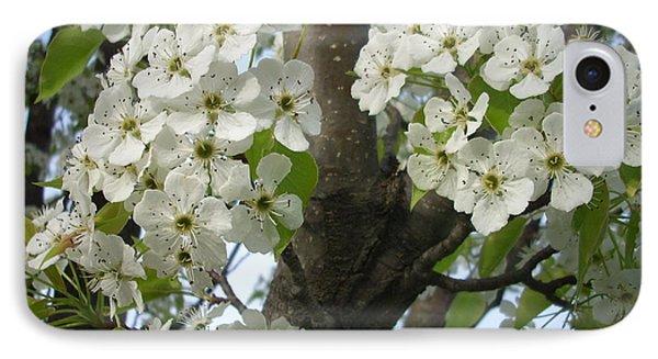 Apple Blossoms Phone Case by Randi Shenkman