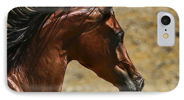 Arabian Mare II IPhone Case by Holly Martin