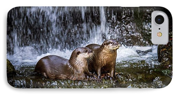 Asian Small-clawed Otters IPhone 7 Case by Paul Williams